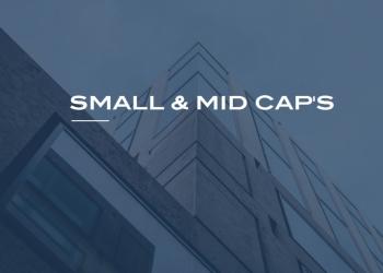 small-mid-caps.jpg